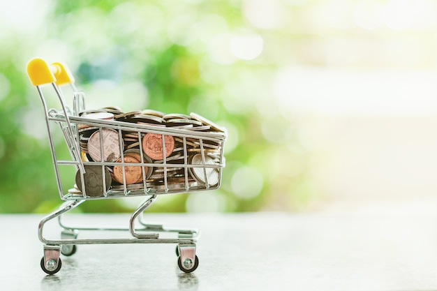 Money coin in mini shopping cart or trolley against blurred natural green background