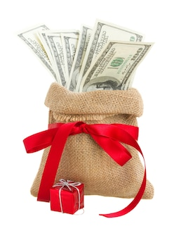 Money in gift bag with red bow isolated
