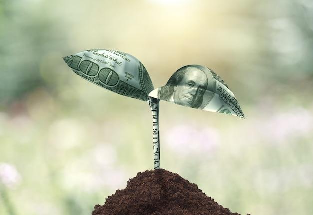 Концепция роста денег