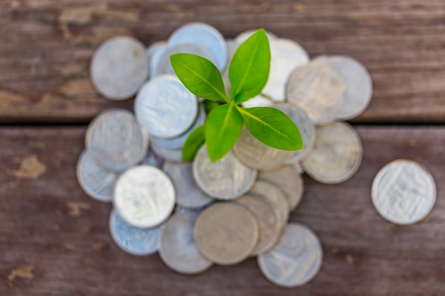돈 성장 미래에 투자 할 예산을 예치하십시오