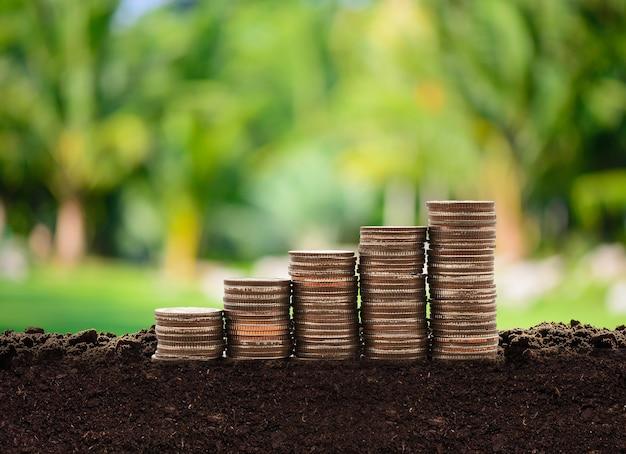コインからのお金の家貯蓄お金の成長