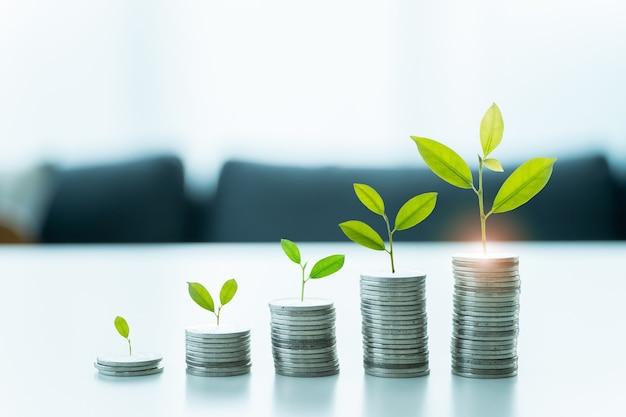 Экономия денег и рост в концепции богатства.