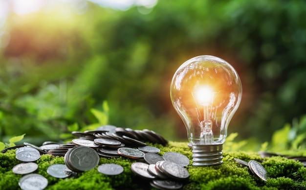 緑の草と自然の中で太陽の光に電球が付いているお金のスタック。お金とエネルギーを節約するコンセプト
