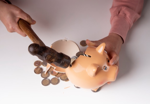 Money taken out by breaking the piggy bank