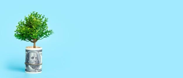 Денежное дерево на синем фоне, растущее дерево из концепции экономики и денег американского доллара