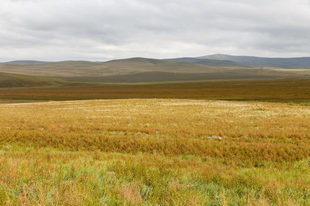 몽골 대초원, 흐린 하늘이 있는 아름다운 풍경.