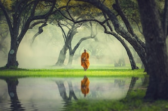 Monk hike in deep forest reflection with lake, Buddha Religion concept