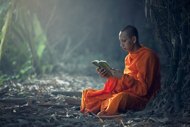 Monk reading book, thailand.