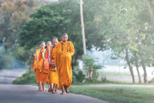 The monk walking for receive food at morning in thailand