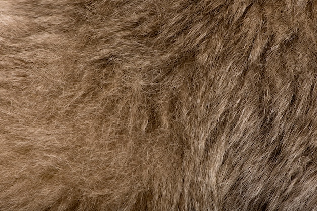 Monkey hair texture background