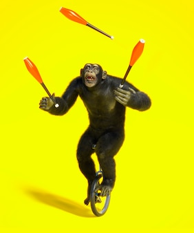 Monkey on unicycle playing with skittles