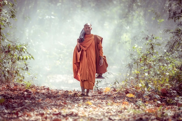 The monks were hiking in the morning.