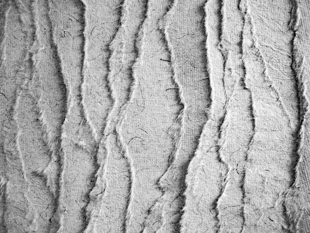 Pergament와 흑백 찢어진 종이