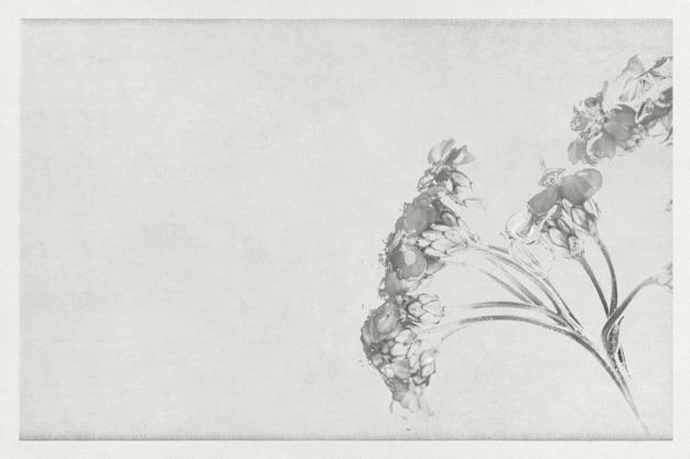 コピースペースのある単調なノコギリソウの花