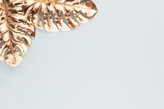 Monstera gold leaf on blue background isolated