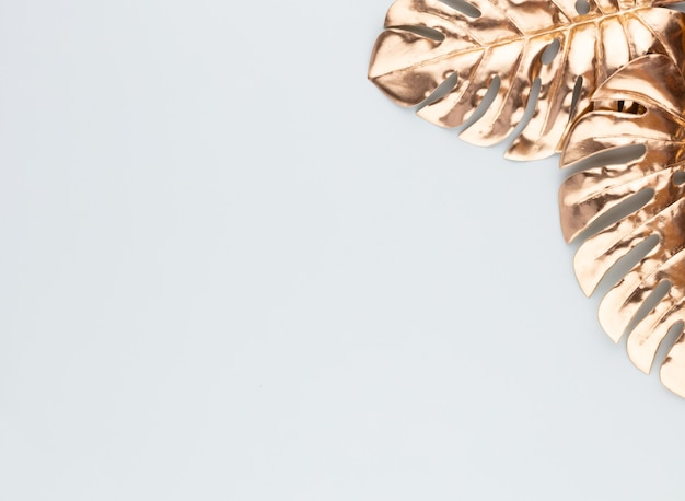 Monstera gold leaf on blue background