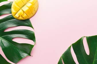 Monstera green leaves with mango on pink