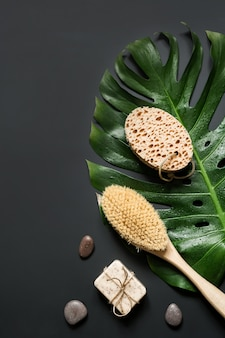 Monstera leaf, brush, spa set for cellulite removal and wellness.