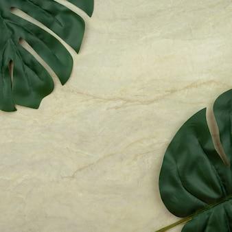 Monstera leaf on empty brown matt marble