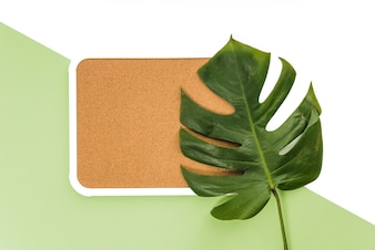 Monstera leaf on board