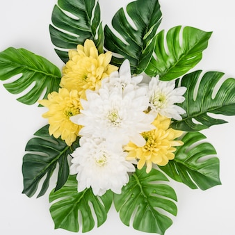 Monstera leaves and white with yellow flowers