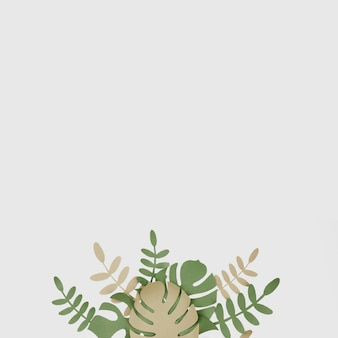 Monstera leaves with copy space background
