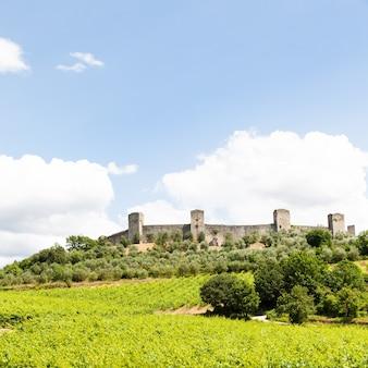 イタリア、トスカーナ地方、モンテリッジョーニ。古代中世の城壁の前にあるワインヤード