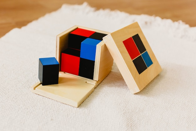 Montessori wood material for the learning of children and children at school