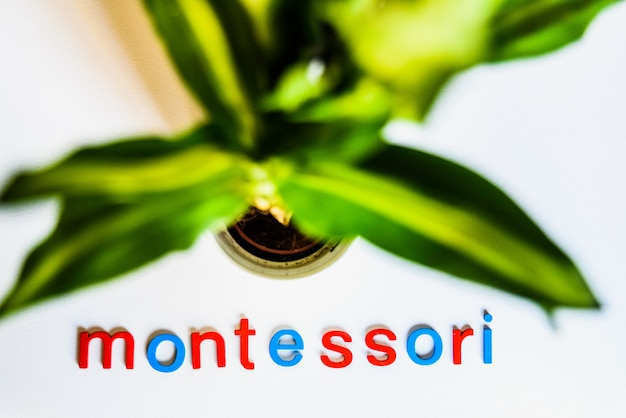 Montessori word written with colorful letters