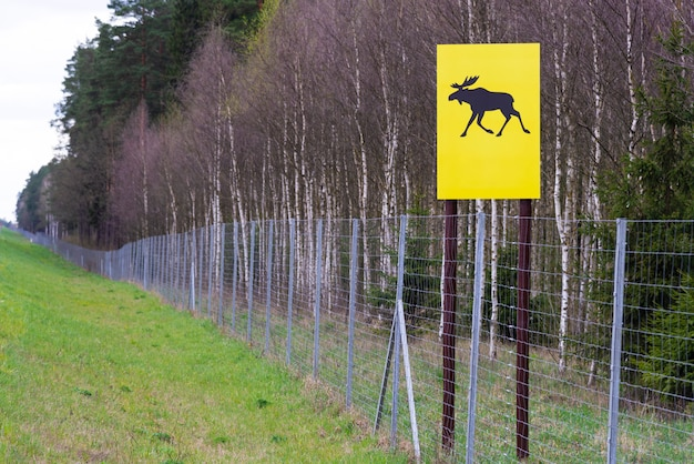 Moose crossing sign. wildlife migration sign and forest fence. beware of moose walking across the road