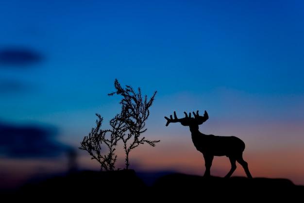 日没の背景にムースシルエット。