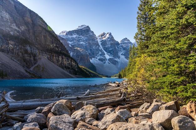 Красивый пейзаж озера морейн в летний солнечный день утром. национальный парк банф, канадские скалистые горы, альберта, канада