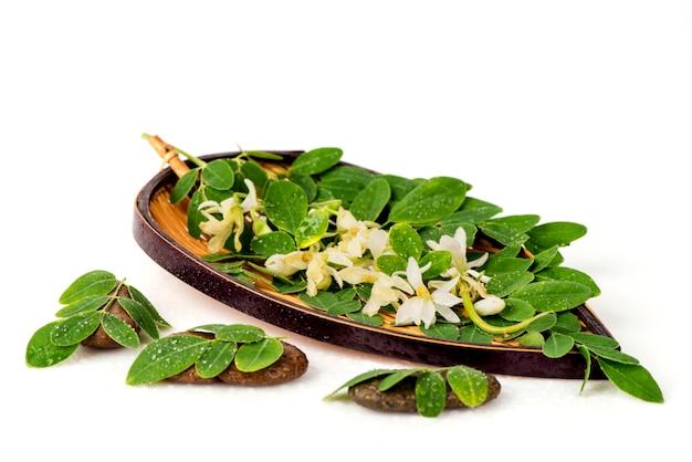 モリンガ緑の葉と白い背景で隔離の花。