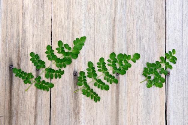 モリンガ緑の葉は古い木の表面にあります。上面図、フラットレイ。