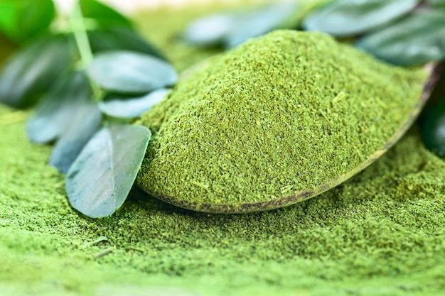 Moringa powder (moringa oleifera) in wooden spoon with original leaves
