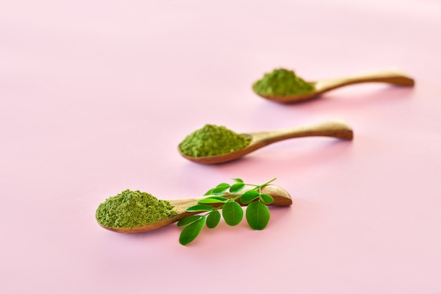Moringa powder (moringa oleifera) in wooden spoons on pink background.