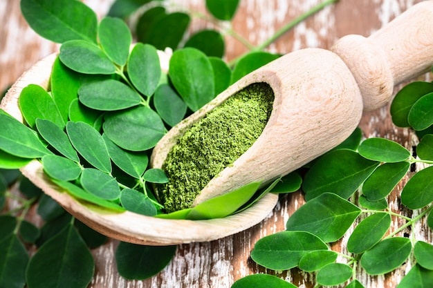 Moringa powder in wooden scoop with original fresh moringa leaves on wooden table.