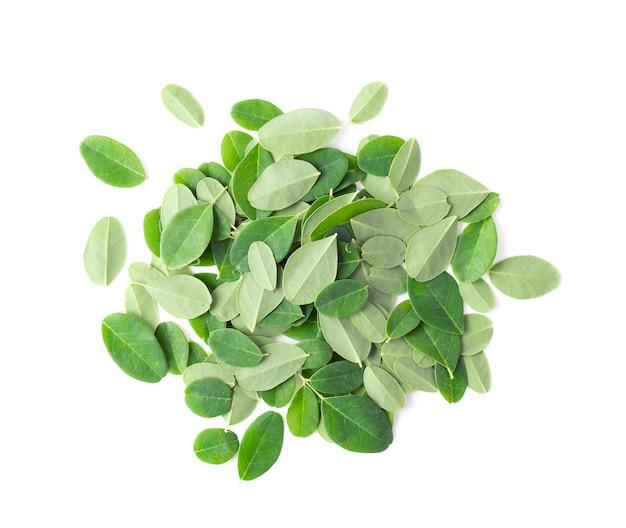 Moringa листья на белом фоне.