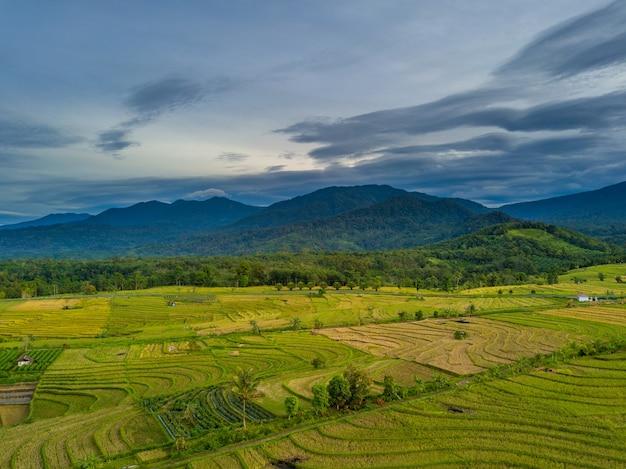 인도네시아 계단식 논에서 아침 공기 전망. 인도네시아에서 산의 아침보기
