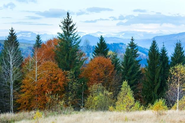 Утренняя осень красочный лес и снег на вершине горы позади.