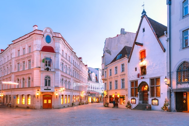 Morning decorated and illuminated christmas street in old town of tallinn, estonia