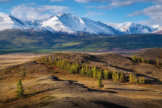 Утро в курайской степи. вид на северо-чуйский хребет. алтай, россия