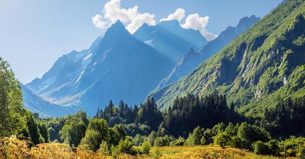 Утро в горах. живописная долина в горах кавказа, домбай. лето и заснеженные вершины.