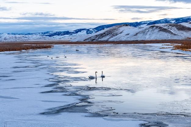 Morning lake in winter landscape in the elk refuge park, wyoming
