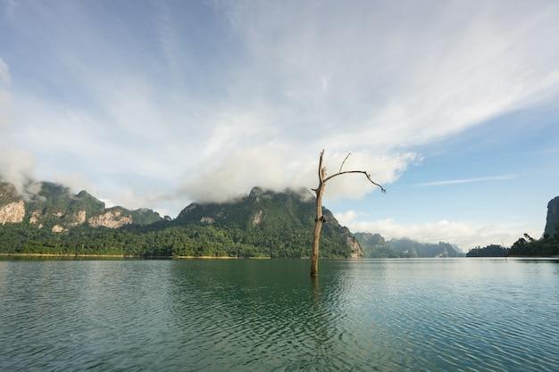 朝の山の風景と霧が山に水に反映