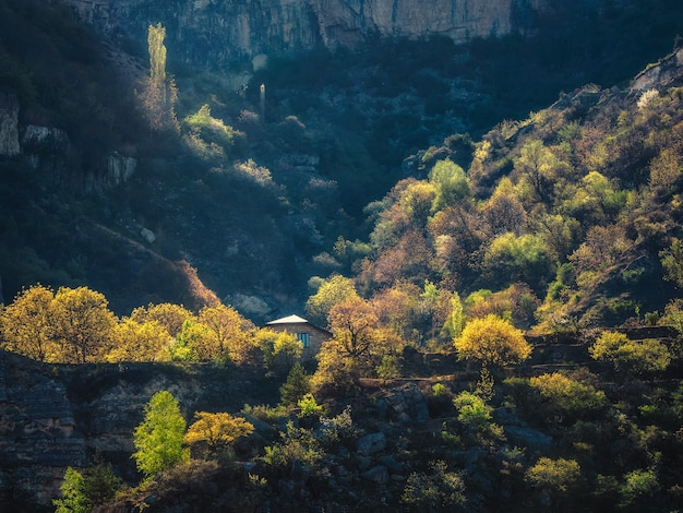 太陽の最初の光線と朝の山の風景。山々の豊かな緑に囲まれた孤独なコテージ。ゲストハウス。旅行の概念。