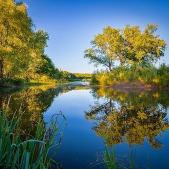 Утро на берегу реки, деревья отражаются в кристально чистой воде, на реке над водой туман.