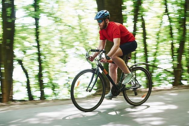 朝に乗る。自転車のサイクリストは晴れた日に森のアスファルト道路に