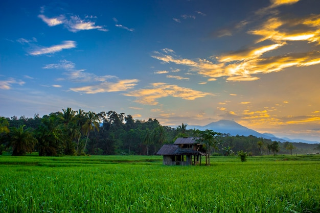 Morning sunrise at mountain range north bengkulu, indonesia