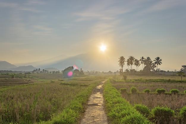 인도네시아 북부 벵쿨루(north bengkulu)의 여름 일출 시 산이 있는 작은 마을의 아침 전망